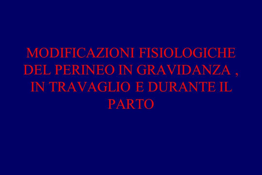 MODIFICAZIONI FISIOLOGICHE DEL PERINEO IN GRAVIDANZA, IN TRAVAGLIO E DURANTE IL PARTO