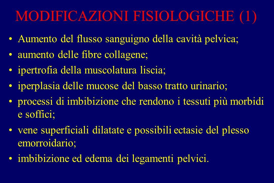 MODIFICAZIONI FISIOLOGICHE (1) Aumento del flusso sanguigno della cavità pelvica; aumento delle fibre collagene; ipertrofia della muscolatura liscia;