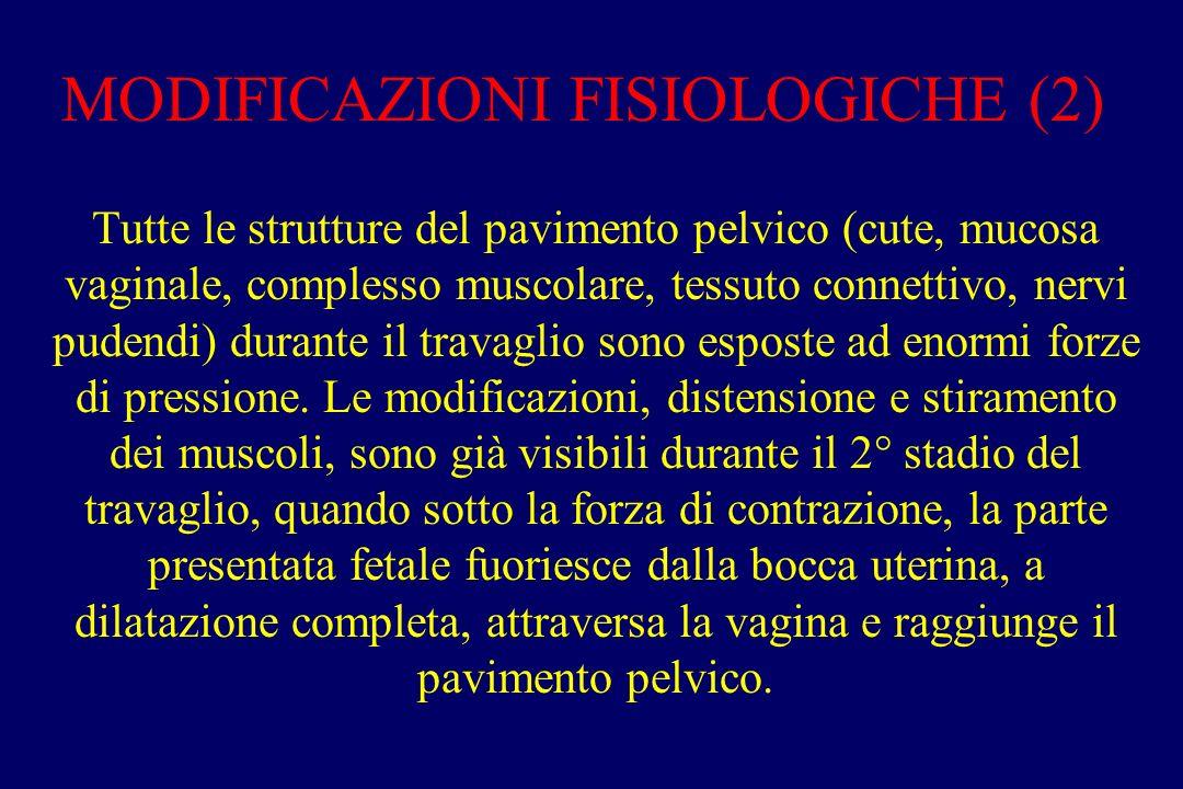 MODIFICAZIONI FISIOLOGICHE (2) Tutte le strutture del pavimento pelvico (cute, mucosa vaginale, complesso muscolare, tessuto connettivo, nervi pudendi