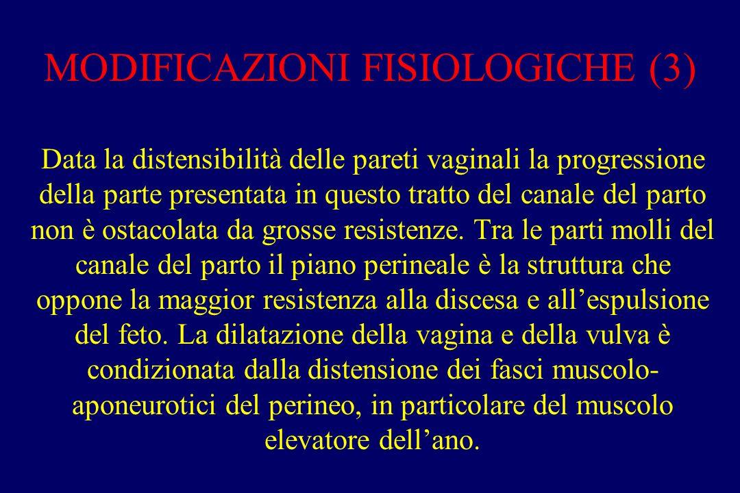 MODIFICAZIONI FISIOLOGICHE (3) Data la distensibilità delle pareti vaginali la progressione della parte presentata in questo tratto del canale del parto non è ostacolata da grosse resistenze.