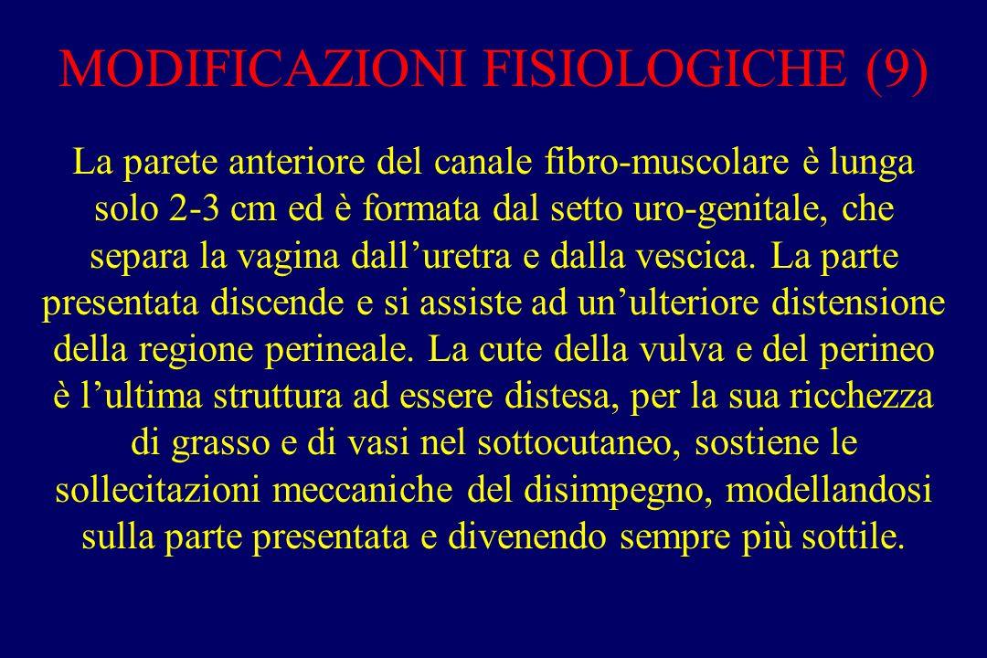 MODIFICAZIONI FISIOLOGICHE (9) La parete anteriore del canale fibro-muscolare è lunga solo 2-3 cm ed è formata dal setto uro-genitale, che separa la vagina dall'uretra e dalla vescica.