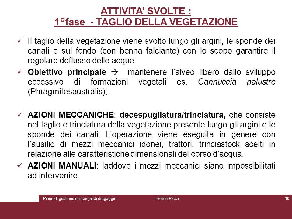 Piano di gestione dei fanghi di dragaggioEveline Ricca10 ATTIVITA' SVOLTE : 1°fase - TAGLIO DELLA VEGETAZIONE Il taglio della vegetazione viene svolto