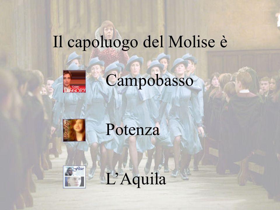 Il capoluogo del Molise è Campobasso Potenza L'Aquila