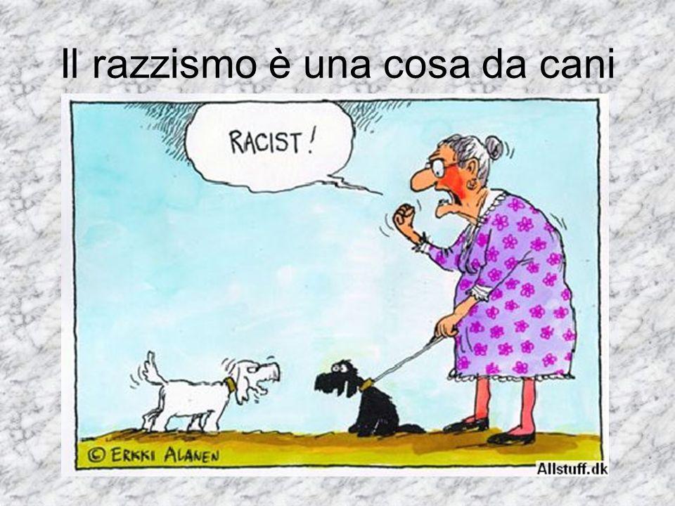 Il razzismo è una cosa da cani