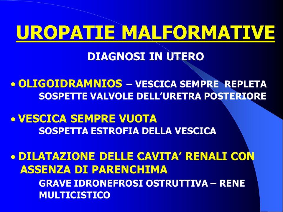 Duplicazione uretrale (in assenza di estrofia) Frequentemente si associano altre malformazioni: Estrofia Vescicale o Cloacale Cingolo pelvico (pube) Procedure diagnostico-terapeutiche - Epispadia
