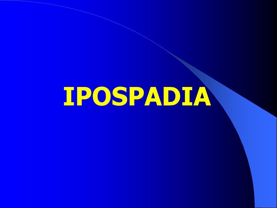 IPOSPADIA