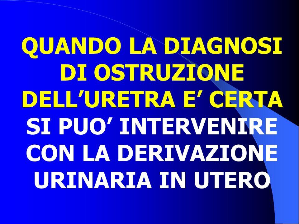 Indicazioni all'intervento Peggioramento della dilatazione ureterale (Eco) Alterazione della funzione renale (SSR) Aumento dei tempi di transito parenchimale (SSR) Procedure diagnostico-terapeutiche - Megauretere