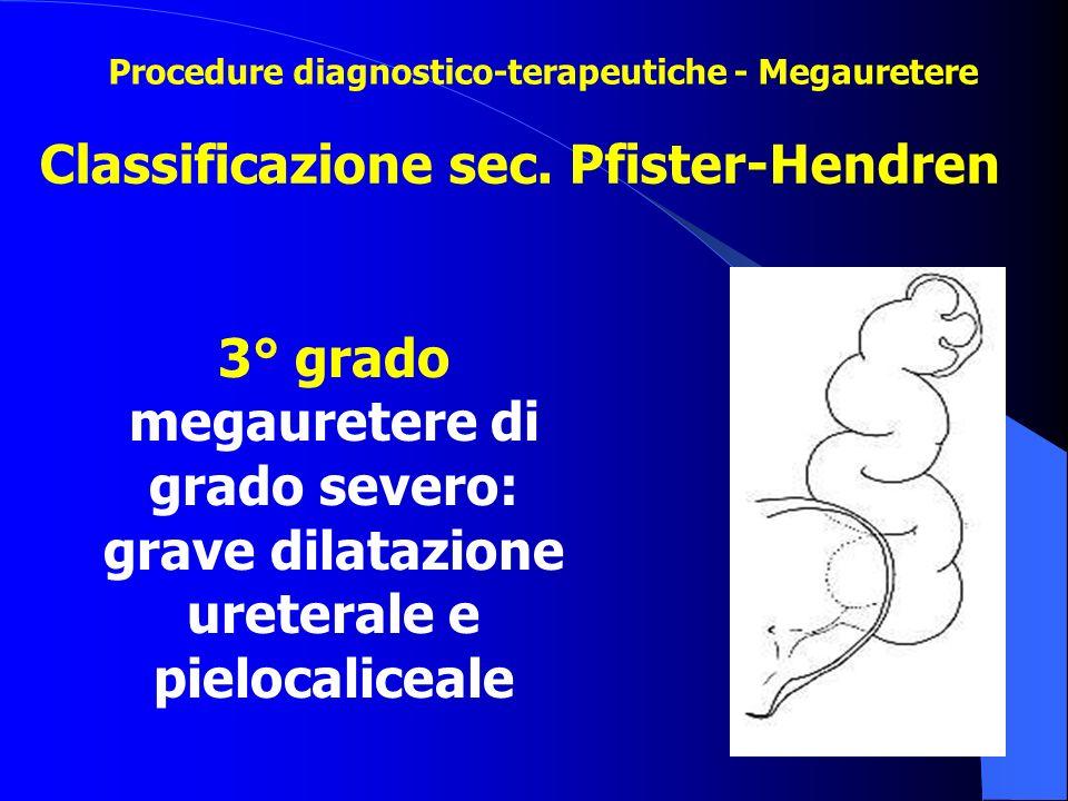 Classificazione sec. Pfister-Hendren 3° grado megauretere di grado severo: grave dilatazione ureterale e pielocaliceale Procedure diagnostico-terapeut
