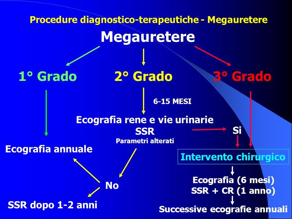 Megauretere 1° Grado Ecografia annuale 2° Grado Intervento chirurgico 3° Grado Ecografia rene e vie urinarie SSR Parametri alterati No Si Ecografia (6
