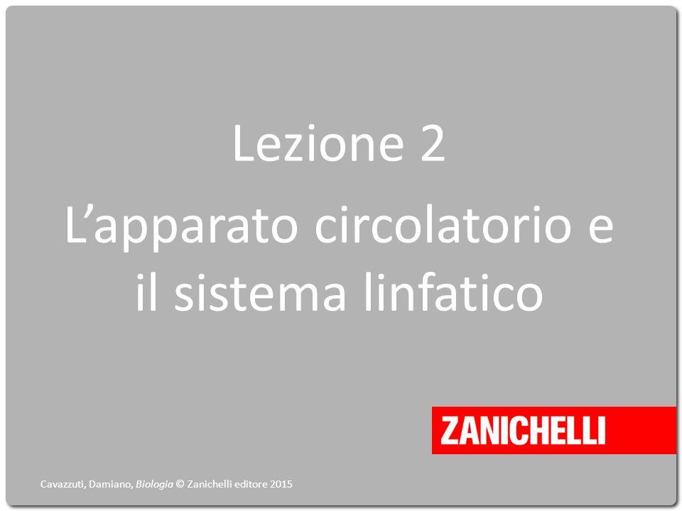 Lezione 2 L'apparato circolatorio e il sistema linfatico Cavazzuti, Damiano, Biologia © Zanichelli editore 2015