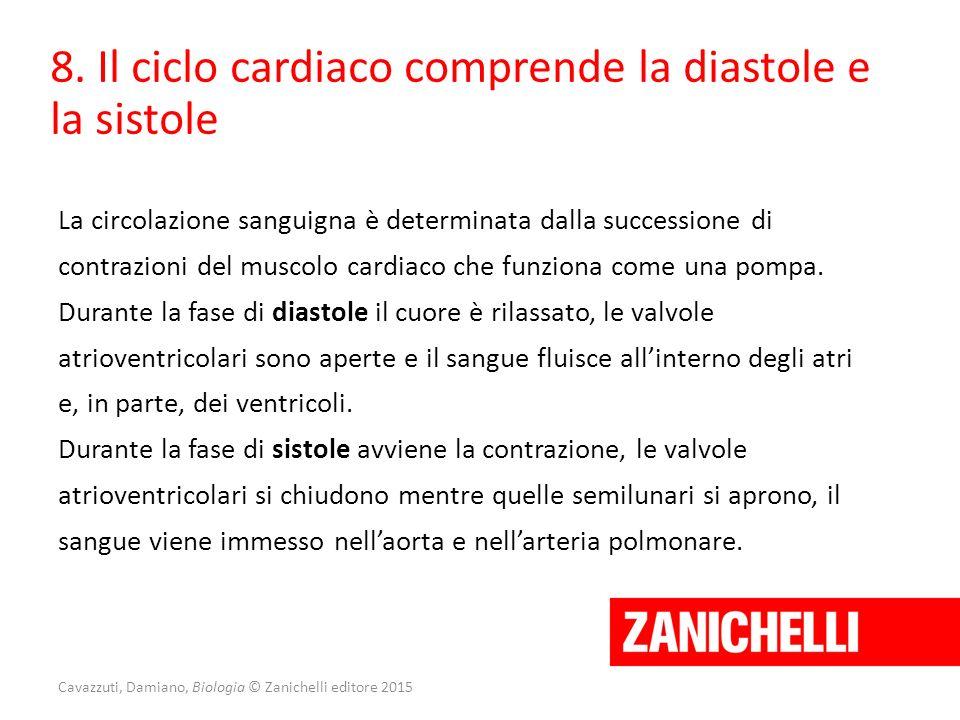 Cavazzuti, Damiano, Biologia © Zanichelli editore 2015 8. Il ciclo cardiaco comprende la diastole e la sistole La circolazione sanguigna è determinata