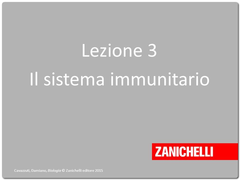 Lezione 3 Il sistema immunitario Cavazzuti, Damiano, Biologia © Zanichelli editore 2015