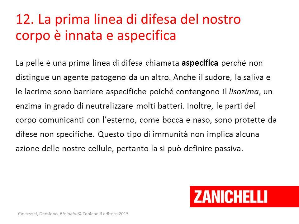 Cavazzuti, Damiano, Biologia © Zanichelli editore 2015 12. La prima linea di difesa del nostro corpo è innata e aspecifica La pelle è una prima linea