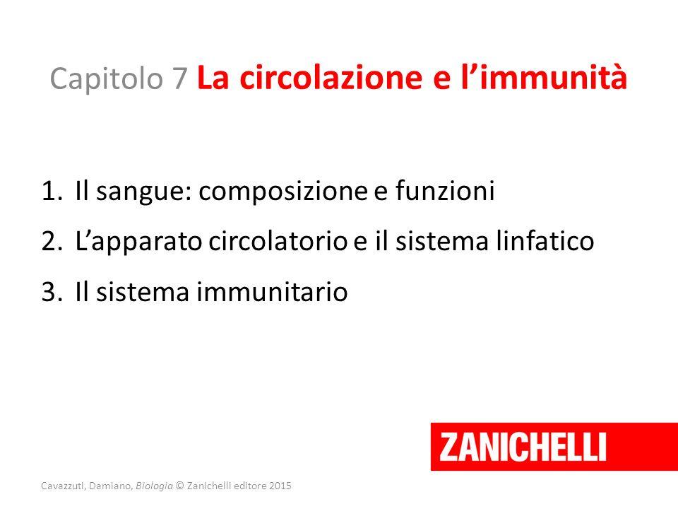 Capitolo 7 La circolazione e l'immunità 1.Il sangue: composizione e funzioni 2.L'apparato circolatorio e il sistema linfatico 3.Il sistema immunitario
