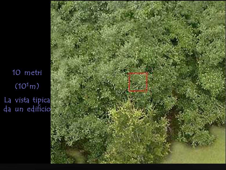100 metri (10 2 m) La vista tipica da un elicottero