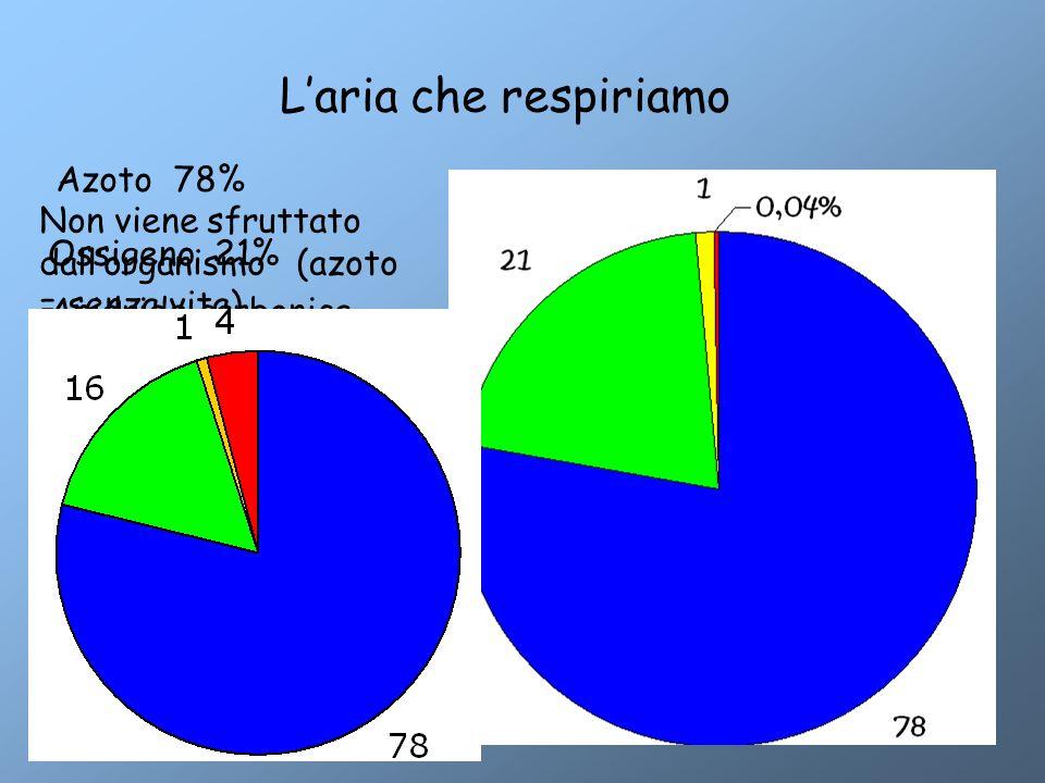 L'aria che respiriamo Azoto 78% Non viene sfruttato dall'organismo (azoto = senza vita) Ossigeno 21% Anidride carbonica 0,04% Tossica in alte concentr