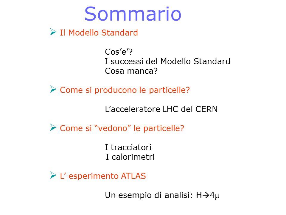""" Il Modello Standard Cos'e'? I successi del Modello Standard Cosa manca?  Come si producono le particelle? L'acceleratore LHC del CERN  Come si """"ve"""