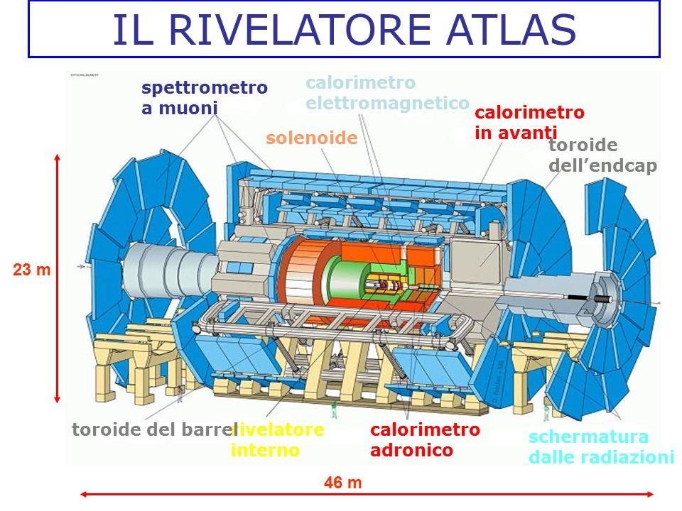 IL RIVELATORE ATLAS calorimetro adronico spettrometro a muoni rivelatore interno toroide del barrel solenoide calorimetro elettromagnetico calorimetro