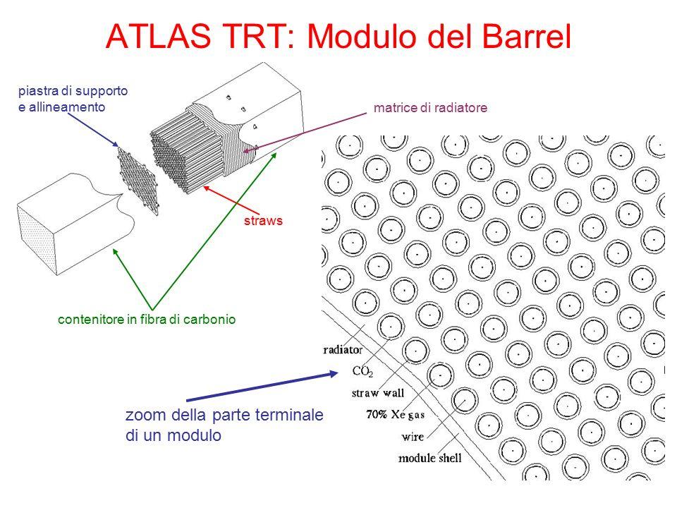 ATLAS TRT: Modulo del Barrel piastra di supporto e allineamento straws matrice di radiatore contenitore in fibra di carbonio zoom della parte terminal