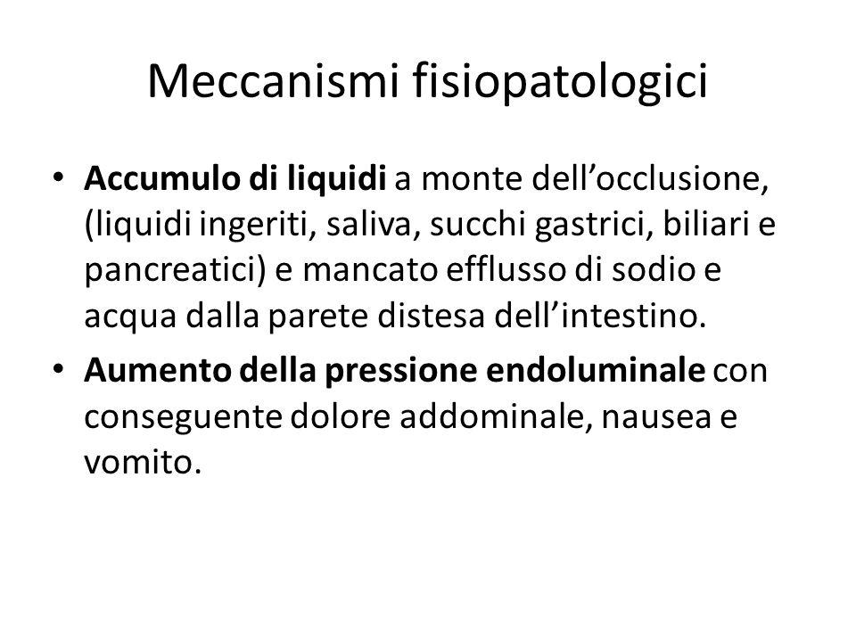 Meccanismi fisiopatologici Accumulo di liquidi a monte dell'occlusione, (liquidi ingeriti, saliva, succhi gastrici, biliari e pancreatici) e mancato e
