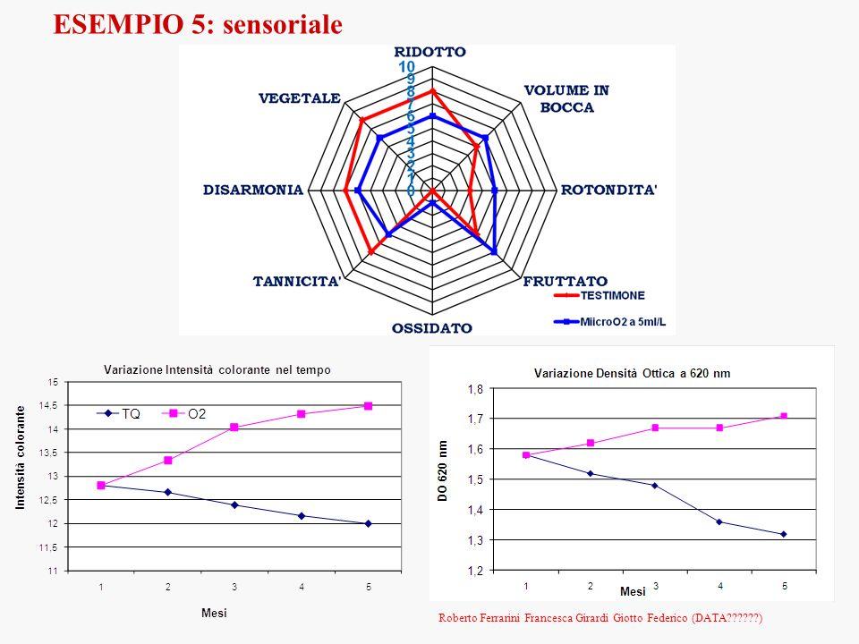 ESEMPIO 5: sensoriale Roberto Ferrarini Francesca Girardi Giotto Federico (DATA??????)