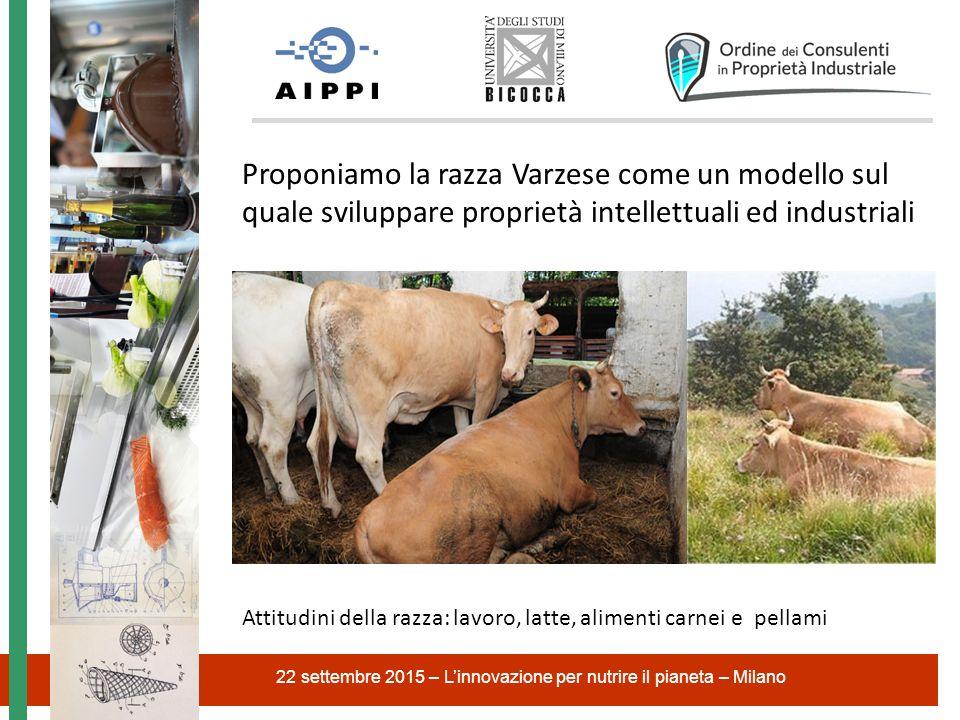 22 settembre 2015 – L'innovazione per nutrire il pianeta – Milano Proponiamo la razza Varzese come un modello sul quale sviluppare proprietà intellett