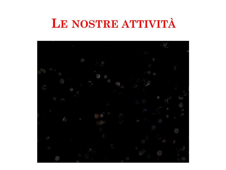 L E NOSTRE ATTIVITÀ
