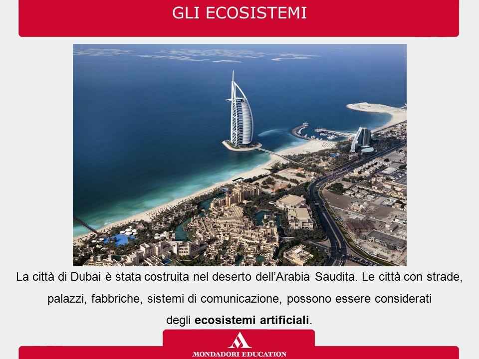 GLI ECOSISTEMI La città di Dubai è stata costruita nel deserto dell'Arabia Saudita. Le città con strade, palazzi, fabbriche, sistemi di comunicazione,