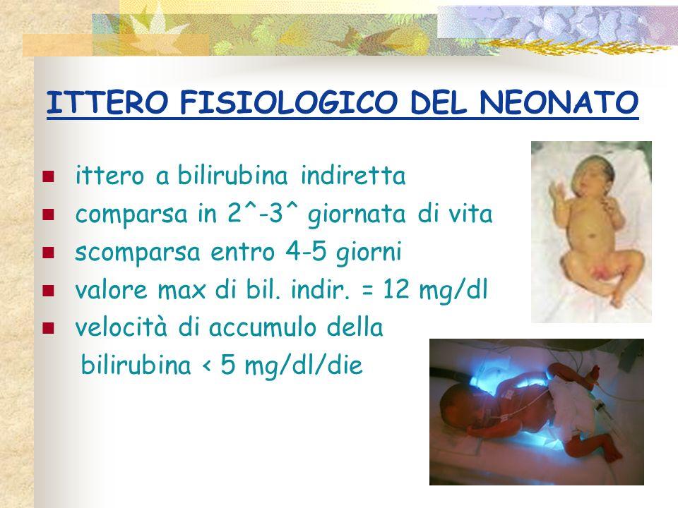 ITTERO FISIOLOGICO DEL NEONATO ittero a bilirubina indiretta comparsa in 2^-3^ giornata di vita scomparsa entro 4-5 giorni valore max di bil. indir. =