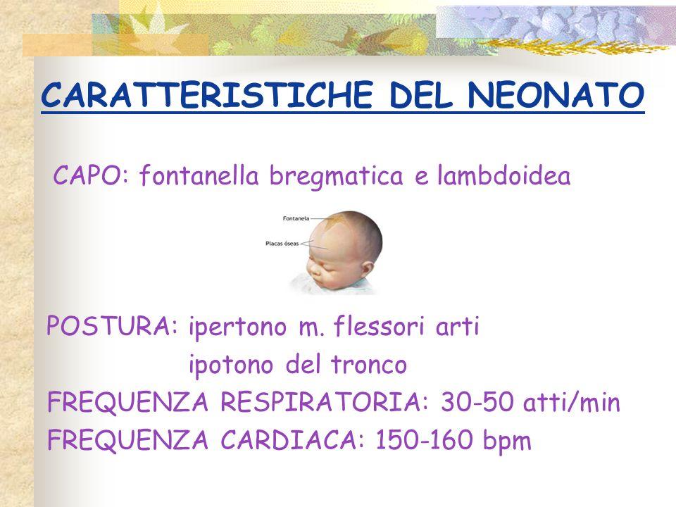CARATTERISTICHE DEL NEONATO CAPO: fontanella bregmatica e lambdoidea POSTURA: ipertono m. flessori arti ipotono del tronco FREQUENZA RESPIRATORIA: 30-