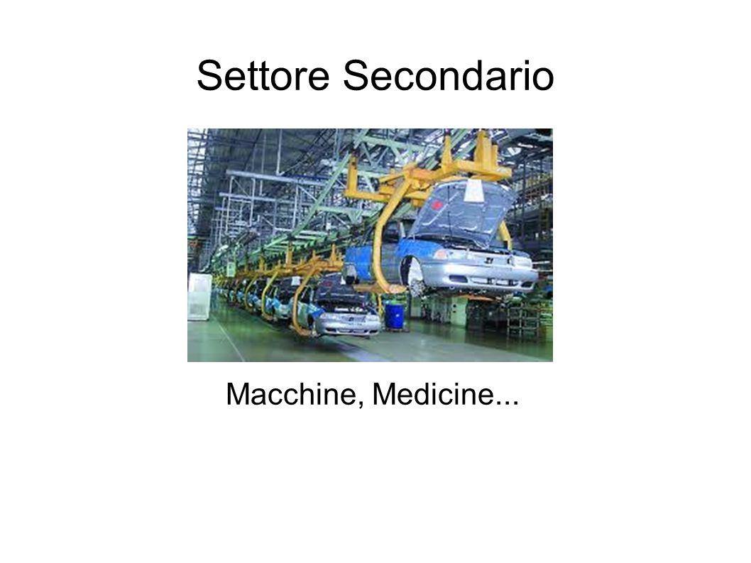 Settore Secondario Macchine, Medicine...