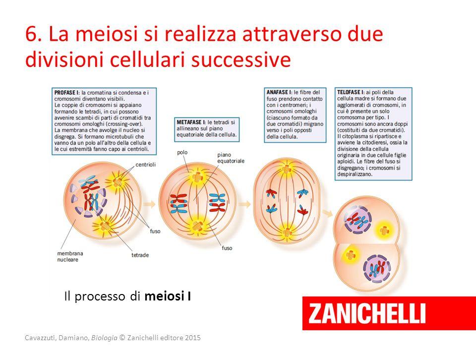 Cavazzuti, Damiano, Biologia © Zanichelli editore 2015 6. La meiosi si realizza attraverso due divisioni cellulari successive Il processo di meiosi I