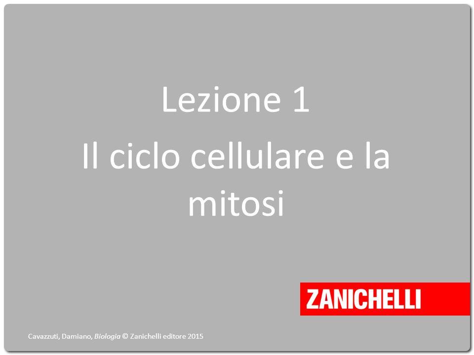 Lezione 1 Il ciclo cellulare e la mitosi Cavazzuti, Damiano, Biologia © Zanichelli editore 2015