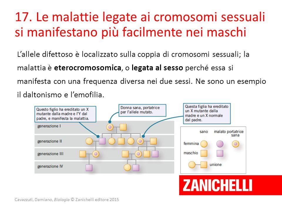 Cavazzuti, Damiano, Biologia © Zanichelli editore 2015 17. Le malattie legate ai cromosomi sessuali si manifestano più facilmente nei maschi L'allele