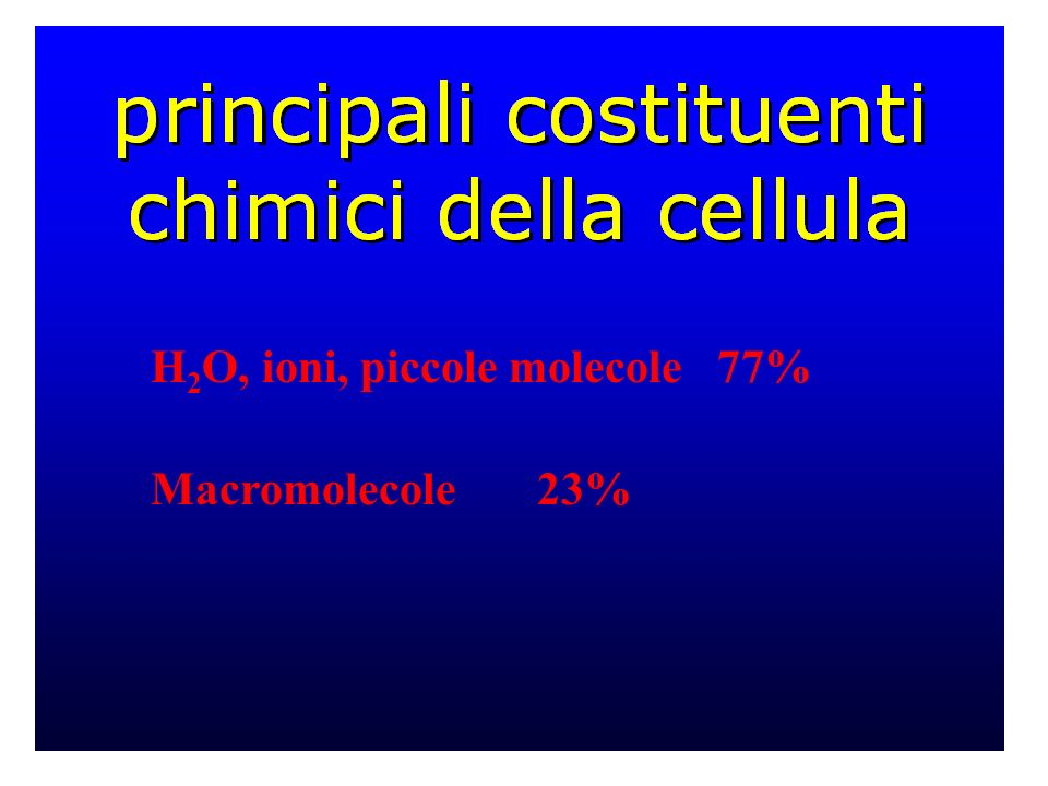 H 2 O, ioni, piccole molecole 77% Macromolecole 23%