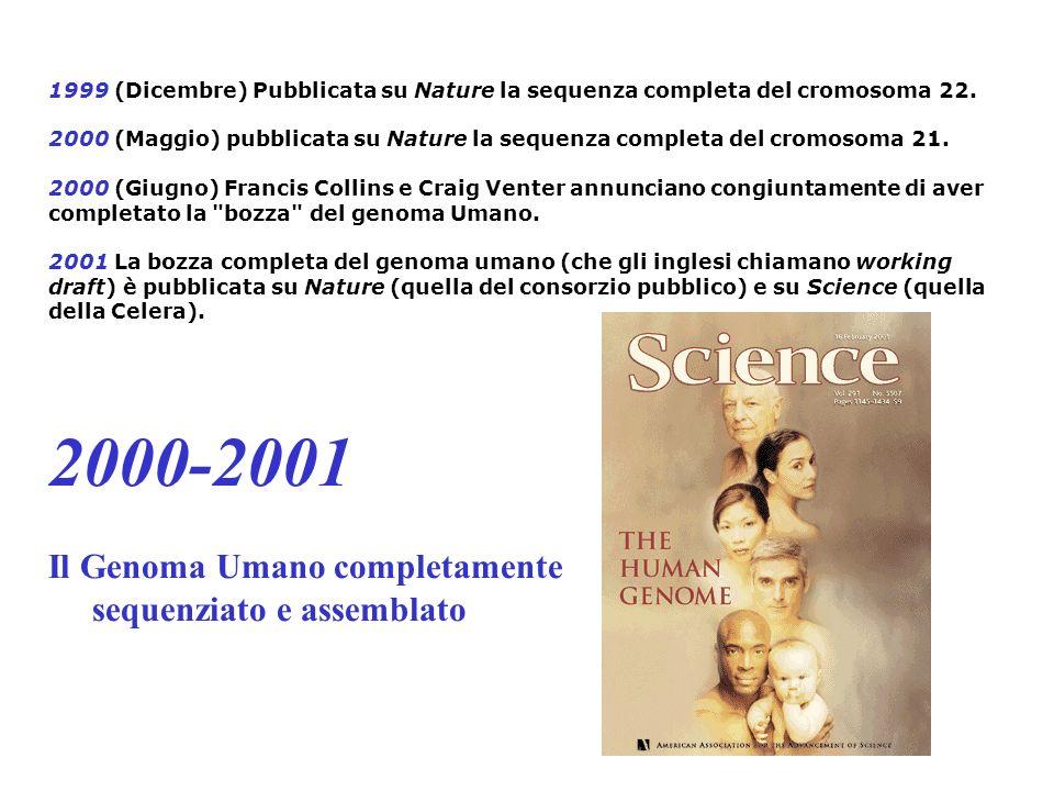1999 (Dicembre) Pubblicata su Nature la sequenza completa del cromosoma 22. 2000 (Maggio) pubblicata su Nature la sequenza completa del cromosoma 21.