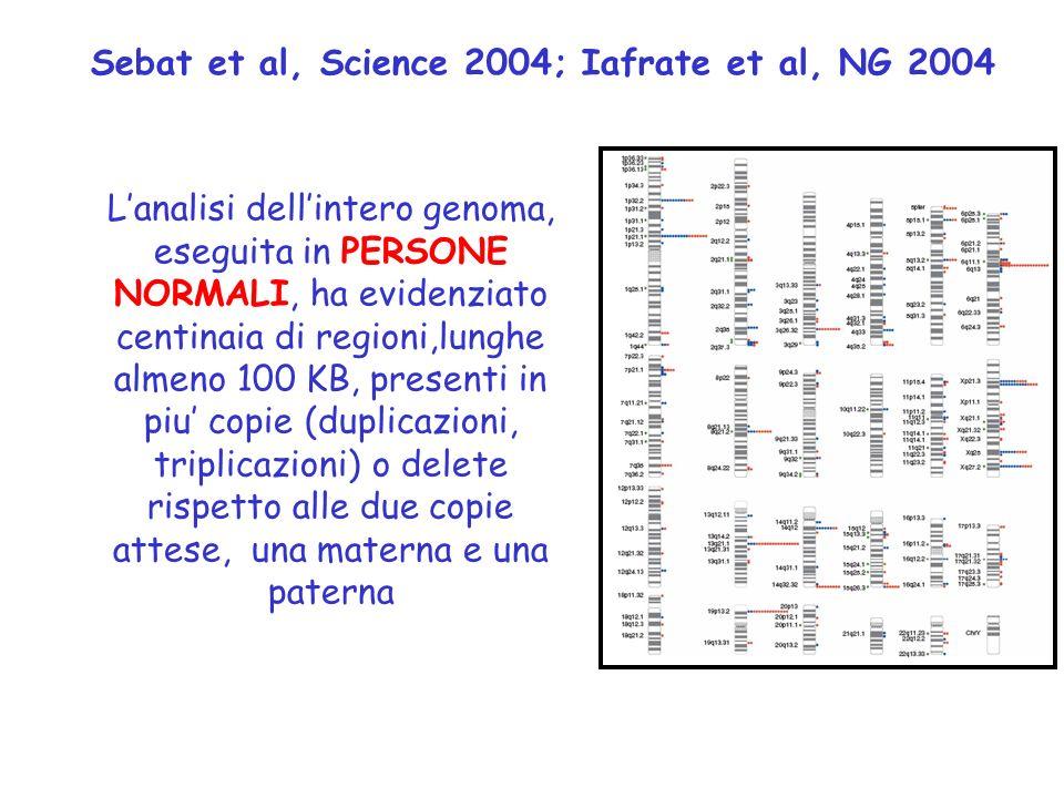 Sebat et al, Science 2004; Iafrate et al, NG 2004 L'analisi dell'intero genoma, eseguita in PERSONE NORMALI, ha evidenziato centinaia di regioni,lunghe almeno 100 KB, presenti in piu' copie (duplicazioni, triplicazioni) o delete rispetto alle due copie attese, una materna e una paterna 7