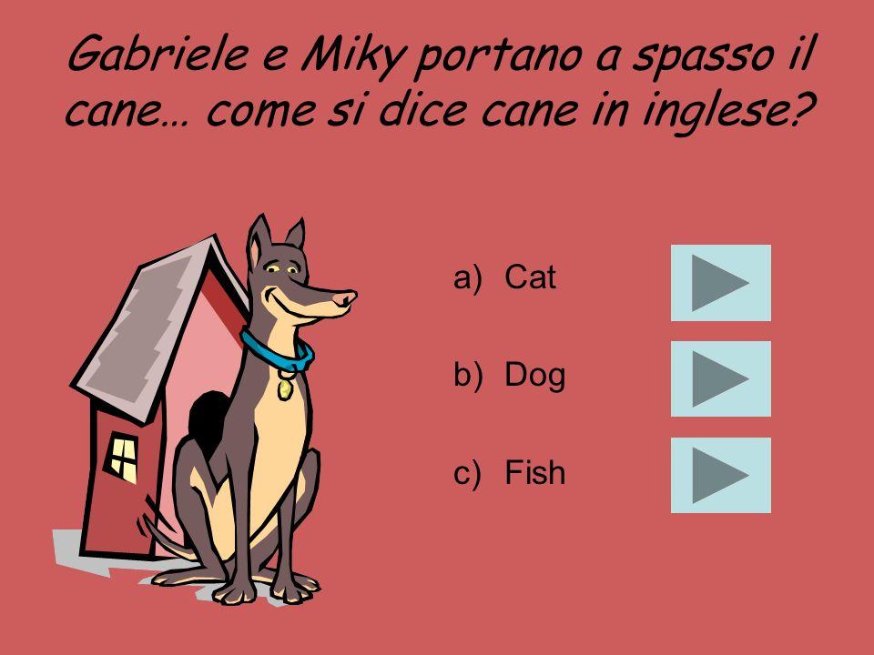 Gabriele e Miky portano a spasso il cane… come si dice cane in inglese? a)Cat b)Dog c)Fish