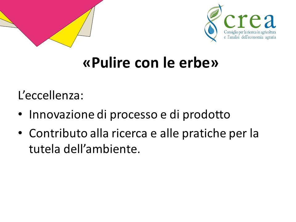 L'eccellenza: Innovazione di processo e di prodotto Contributo alla ricerca e alle pratiche per la tutela dell'ambiente.