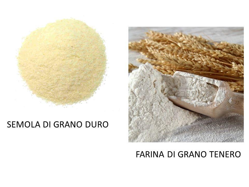 FARINA DI GRANO TENERO SEMOLA DI GRANO DURO