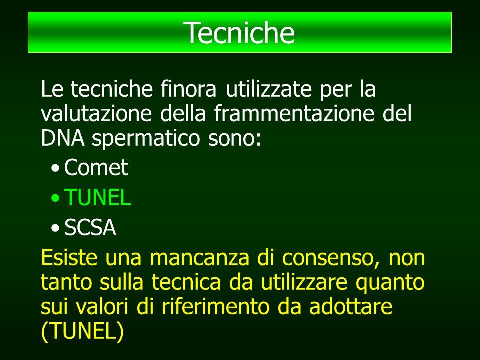 Le tecniche finora utilizzate per la valutazione della frammentazione del DNA spermatico sono: Comet TUNEL SCSA Esiste una mancanza di consenso, non tanto sulla tecnica da utilizzare quanto sui valori di riferimento da adottare (TUNEL) Tecniche