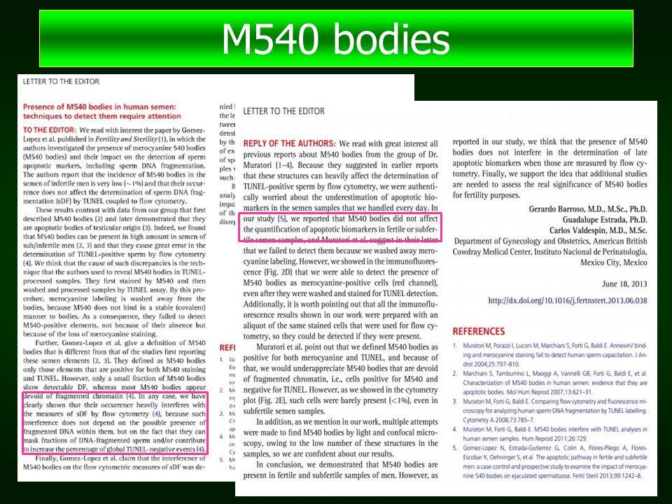 M540 bodies