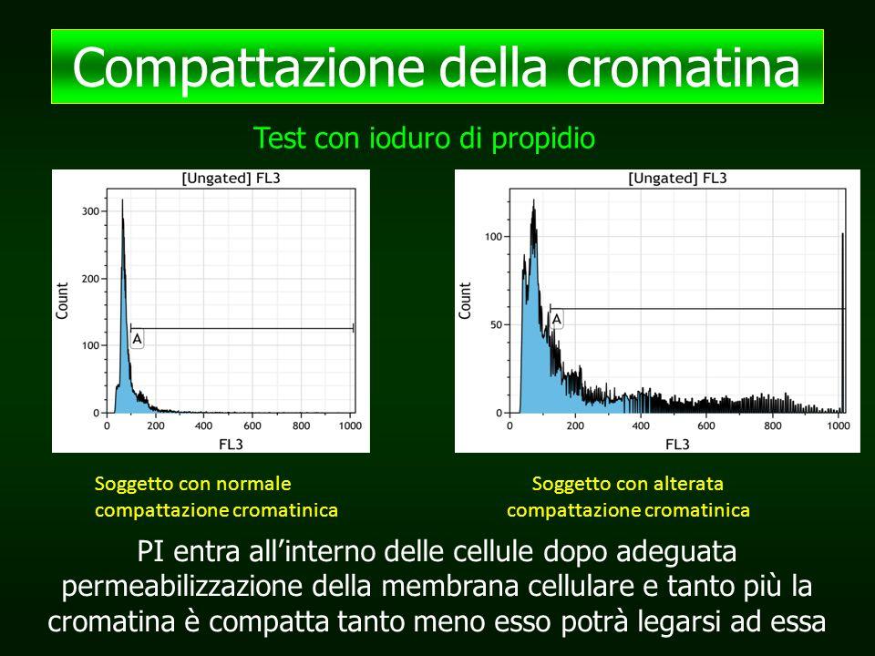 Compattazione della cromatina Test con ioduro di propidio Soggetto con normale compattazione cromatinica Soggetto con alterata compattazione cromatinica PI entra all'interno delle cellule dopo adeguata permeabilizzazione della membrana cellulare e tanto più la cromatina è compatta tanto meno esso potrà legarsi ad essa