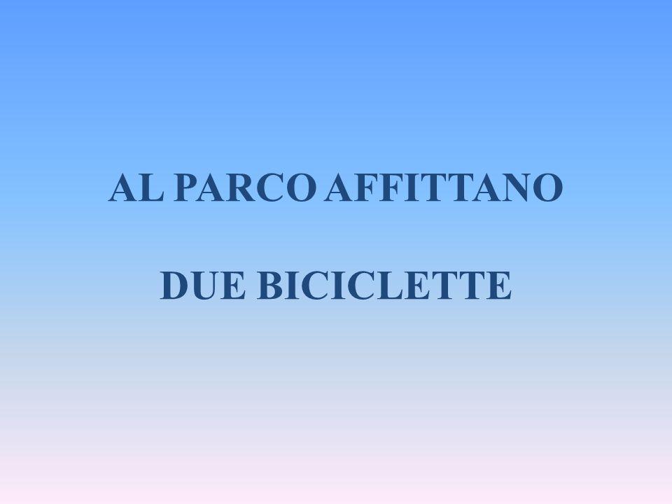 AL PARCO AFFITTANO DUE BICICLETTE