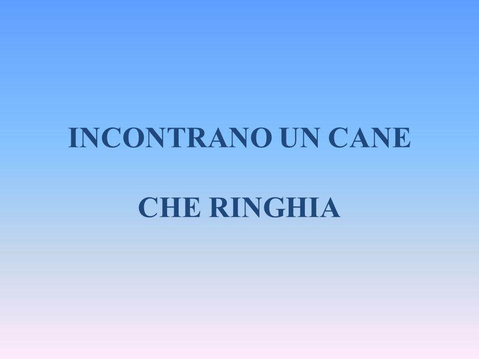 INCONTRANO UN CANE CHE RINGHIA