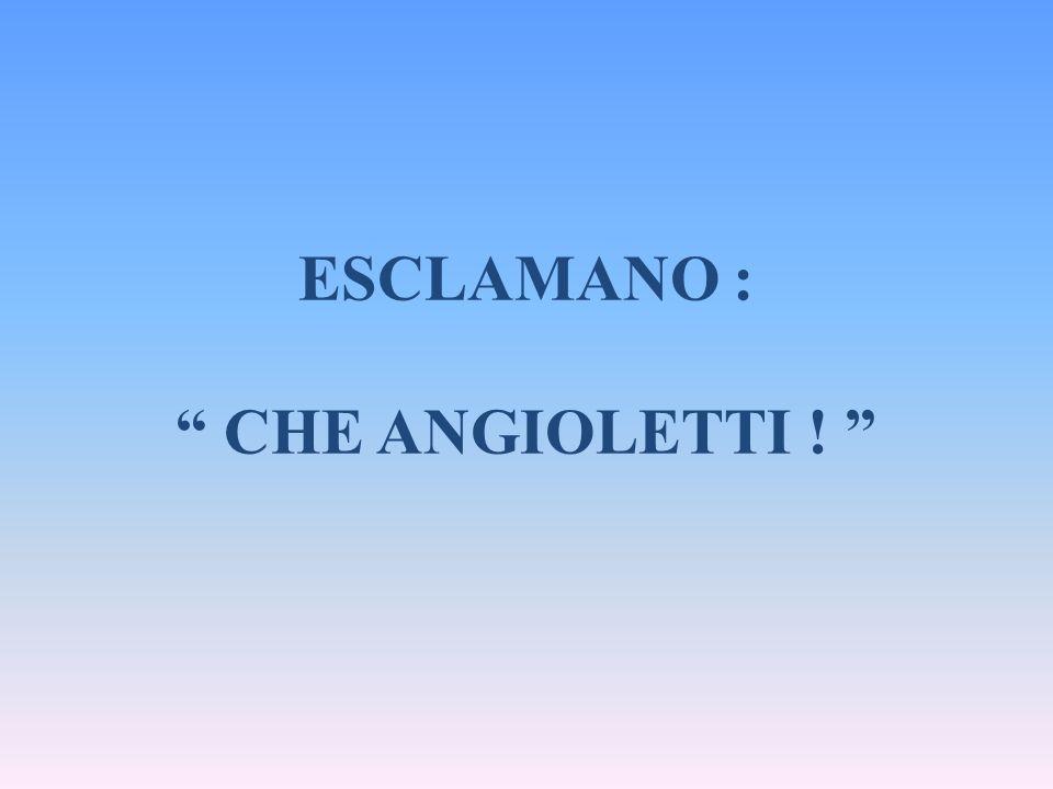 """ESCLAMANO : """" CHE ANGIOLETTI ! """""""