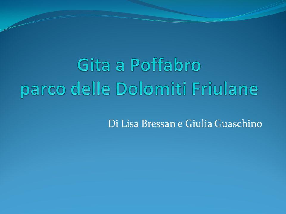 Di Lisa Bressan e Giulia Guaschino