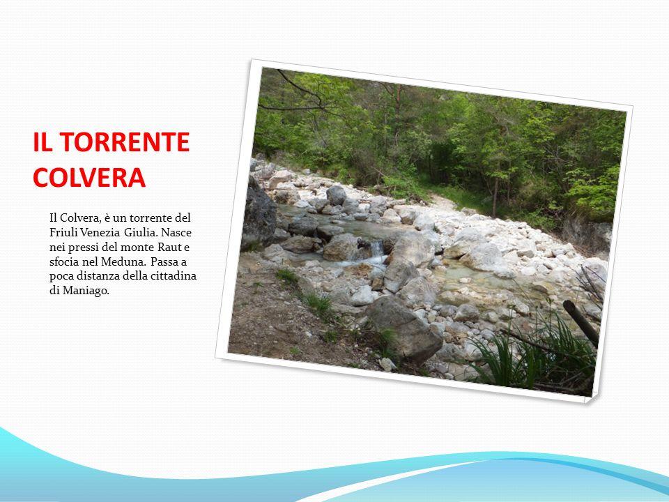IL TORRENTE COLVERA Il Colvera, è un torrente del Friuli Venezia Giulia.