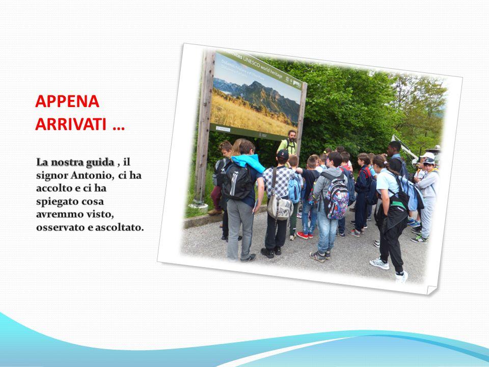 UNESCO … Nel cartello dietro le spalle della guida, c'è scritto che le Dolomiti sono patrimonio UNESCO.
