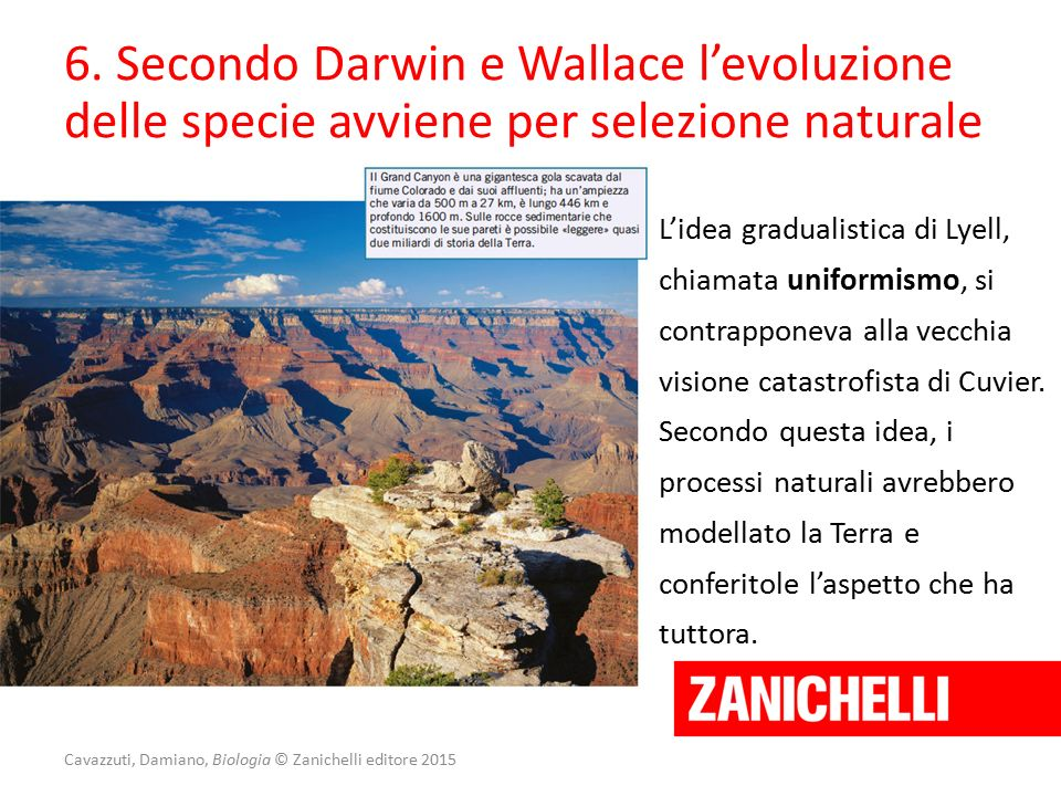 Cavazzuti, Damiano, Biologia © Zanichelli editore 2015 6. Secondo Darwin e Wallace l'evoluzione delle specie avviene per selezione naturale L'idea gra